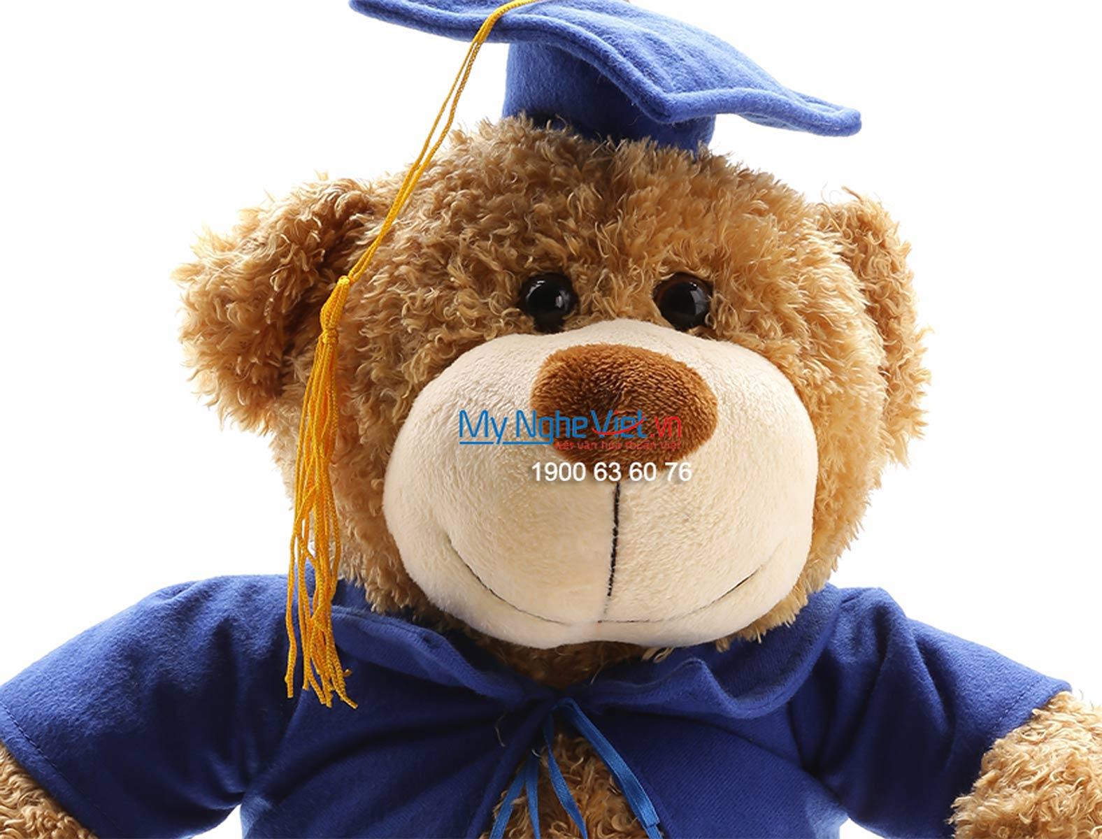 Gấu tốt nghiệp nâu mũ xanh- quà tốt nghiệp QTN-GBL01